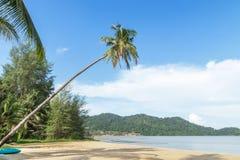 Pendenza magra dell'albero del cocco sopra la spiaggia tropicale all'isola di Koh Chang, Trat, Tailandia fotografia stock libera da diritti