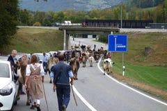 Pendiente suiza del ganado de Alpabfahrt 2018 fotografía de archivo libre de regalías