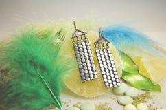 Pendientes de plata con las plumas y las rebanadas de la piña Imágenes de archivo libres de regalías