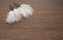 Pendientes delicados hermosos con las plumas en un fondo de madera Fotos de archivo libres de regalías