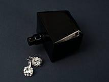Pendientes y perfume del diamante Imagen de archivo libre de regalías