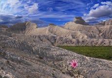 Pendii bianchi delle montagne Fotografia Stock Libera da Diritti