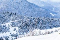 Pendii boscosi delle montagne di Caucaso in sole della nuvola Fotografie Stock Libere da Diritti