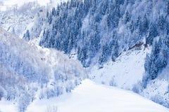 Pendii boscosi delle montagne di Caucaso in sole della nuvola Immagini Stock Libere da Diritti