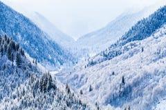 Pendii boscosi delle montagne di Caucaso in sole della nuvola Immagine Stock Libera da Diritti