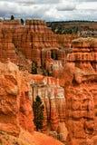 Pendii del canyon di Bryce immagini stock libere da diritti