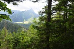 Pendii delle montagne Immagini Stock