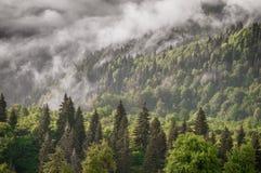 Pendii di montagna Fotografie Stock