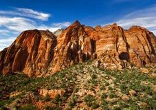 Pendii pieni di sole del canyon di Zion Fotografia Stock