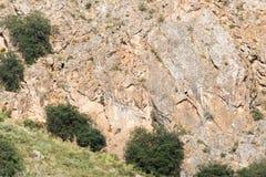 Pendii rocciosi nelle montagne Immagine Stock