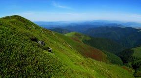 Pendii verdi della montagna Fotografia Stock