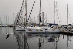 Pendik Marina And Sea Transportation - Turquía Foto de archivo