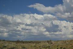 Pendio del deserto Fotografie Stock