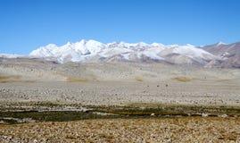 Pendio del nord dell'Himalaya Fotografie Stock Libere da Diritti