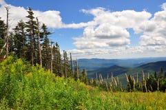 Pendio del pattino - Mt. Mansfield, VT Fotografia Stock