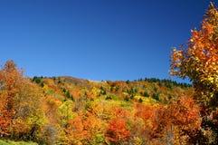 Pendio di collina della Virginia dell'Ovest in autunno orizzontale Fotografia Stock Libera da Diritti