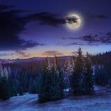 Pendio di collina di autunno con la foresta rossa e gialla alla notte Fotografia Stock