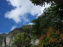 Pendio di collina di Palawan Fotografia Stock
