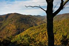Pendio di collina di Shenandoah Immagine Stock Libera da Diritti