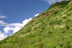 pendio di collina hawaiano Immagini Stock