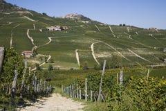 Pendio di collina in Piemonte fotografie stock libere da diritti