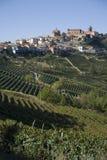 Pendio di collina in Piemonte fotografia stock