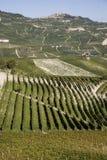 Pendio di collina in Piemonte fotografie stock