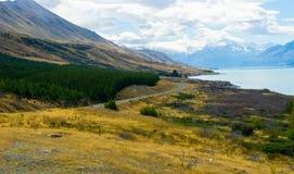Pendio di collina scozzese Fotografia Stock Libera da Diritti