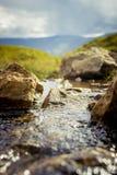 Pendio di collina scozzese Immagini Stock
