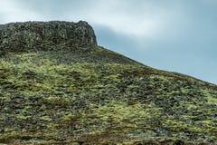Pendio di montagna coperto in muschio Fotografia Stock
