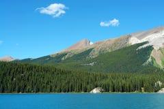 Pendio e foresta di montagna immagini stock libere da diritti