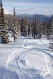 Pendio per corsa con gli sci e lo snowboard di freeride Fotografia Stock