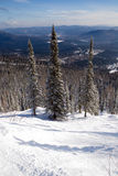 Pendio per corsa con gli sci e lo snowboard di freeride Fotografie Stock Libere da Diritti