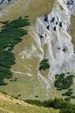Pendio ripido con il ghiaione nelle alpi fotografia stock libera da diritti