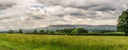 Pendle wzgórze z rolnymi polami i drzewami zdjęcia stock