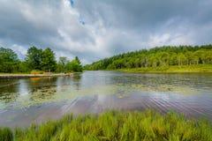 Free Pendleton Lake, At Blackwater Falls State Park, West Virginia Royalty Free Stock Image - 147570376