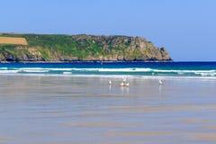 Pendower strand Cornwall England Royaltyfri Bild