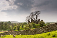 Pendragon Castle behind dry stone wall Royalty Free Stock Image