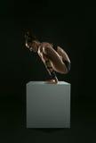 Pendulum yoga pose on the straight hands Royalty Free Stock Image