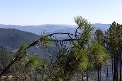 Peneda geres national park portugal. Naturescape peneda geres national park portugal stock photography