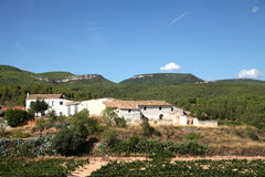 Penedes Vineyard Stock Images