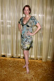 Penelope Ann Miller foto de stock royalty free