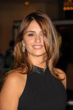 Penelope Cruz. At the NINE Los Angeles Premiere, Mann Village Theater, Westwood, CA. 12-09-09 royalty free stock images