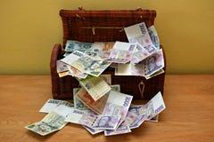 Pengar i bröstkorg Fotografering för Bildbyråer