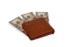 Pengar i brunt Arkivfoto