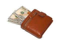 Pengar i brunt Royaltyfri Foto