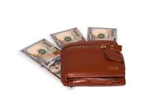 Pengar i brunt Royaltyfri Bild