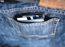 Pengar i en läderhandväska Arkivfoto