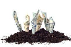 Pengar i jordningen Arkivfoton