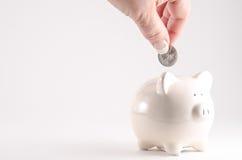 Pengar i packa ihop Royaltyfri Fotografi